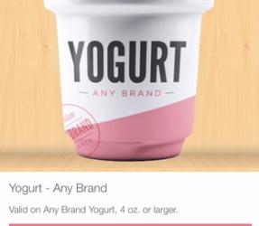 Siggi's Yogurt