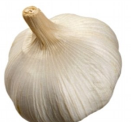 Bulb of Garlic for $0.25 – Save up to 50%