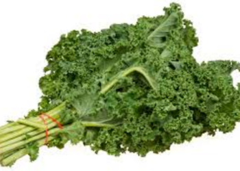 Organic Kale for Just $0.99