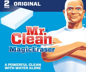 Spring Clean with Mr. Clean, Only $1.50