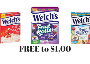 FREE Welch's Fruit Rolls, $0.50 Fruit 'n Yogurt, and $1.00 Fruit Snacks