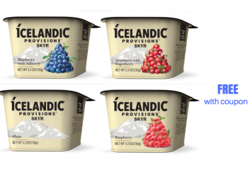 FREE Icelandic Provisions Skyr Yogurt With Coupons and Sale at Safeway