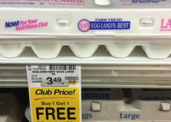 Eggland's Best Deals – Pay as Low as $1.20 for Eggs