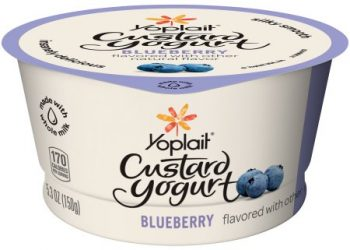 NEW Yoplait Coupon, Only $0.50 for Custard Yogurt