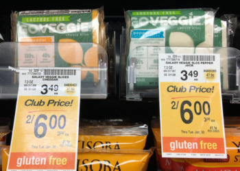 Go Veggie Coupon – Pay as Low as $1.50 for Cheese Slices