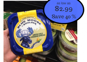 Blue Moose Cheese Dip as Low as $2.99 at Safeway – Save 40%