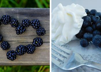 Organic Blueberries & Blackberries for $1.99 (Plus Makeena Rebates)