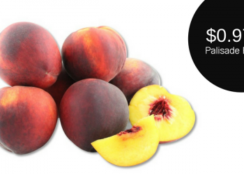 Palisade Peaches Now at Safeway – Only $0.97 Per Pound
