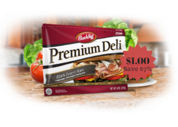 Buddig Premium Deli Lunchmeat Only $1.00 – Save 67%
