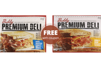FREE Buddig Premium Deli Lunchmeat at Safeway