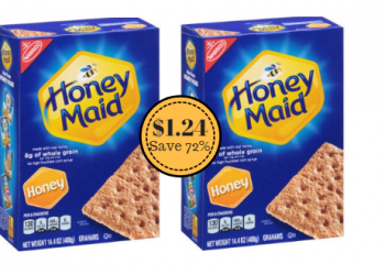 Nabisco Honey Maid Graham Crackers Just $1.24 With Coupon & Sale (Reg. $4.49)