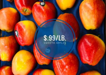 Sweetie Apples – New Variety of Apples from WA Now Available at Safeway