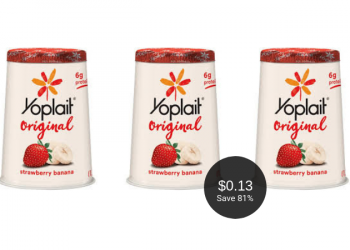Yoplait Cups for $0.13 Each at Safeway – Save up to 81%