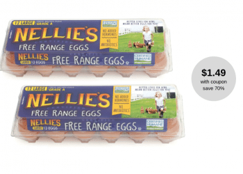 Nellie's Free Range Eggs Coupon & Sale, Pay Just $1.49 at Safeway (Reg. $4.99)