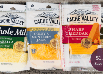 Cache Valley Coupon + Sale at Safeway = $1.50 for Cheese