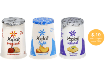 Yoplait Yogurt Coupon and Sale, Pay Just $.19 at Safeway