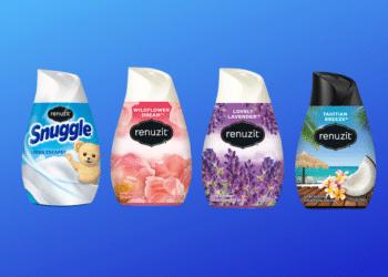 $.38 Renuzit Adjustables Air Freshener Cones at Safeway