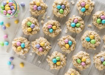 Chocolate Coconut Egg Nests – No Bake Recipe