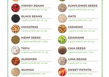 Best Plant Based Sources of Protein