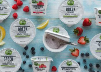 Open Nature Icelandic Yogurt  and Greek Yogurt Just 59¢ With a Coupon at Safeway