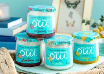 New Oui by Yoplait Dairy Free Yogurt  – Try for Just $1.08 a Jar