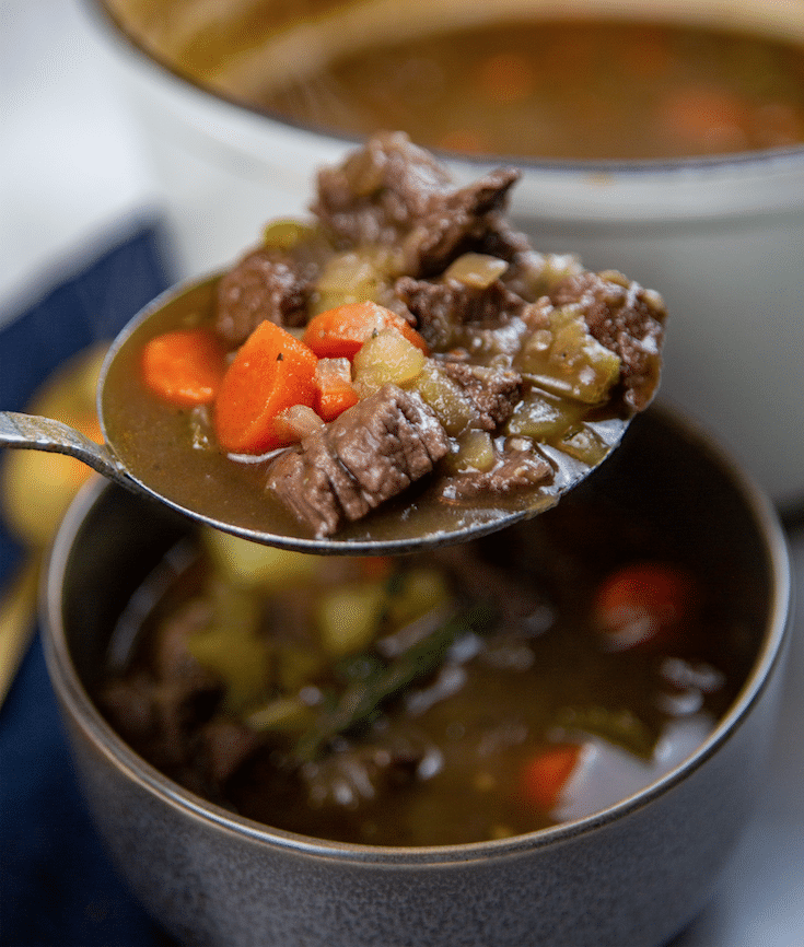 easy_Beef_Stew_Closeup