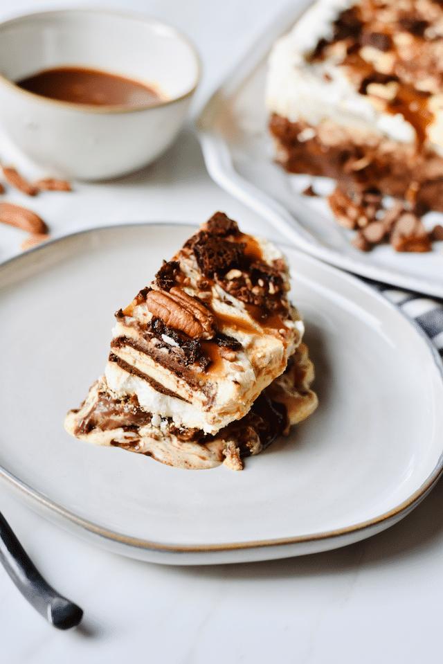 turtle_ice_Cream_Sandwich_Cake